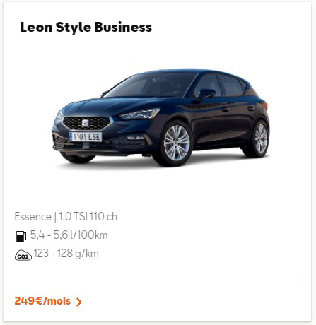 Leon Style Business